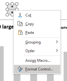 spin button format control