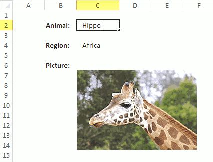 How to change a picture in a worksheet dynamically