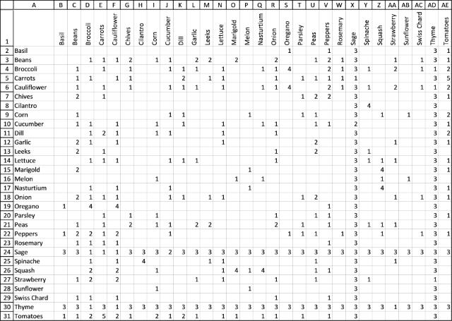 Building a companion planting chart 5